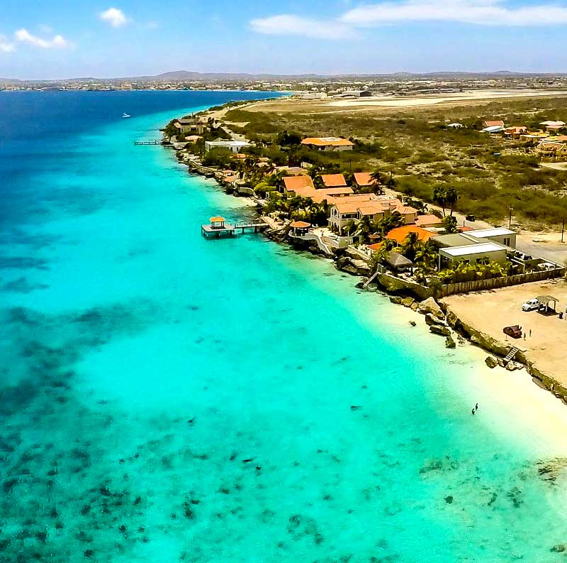 Stinapa Gives Information About Protected Marine Species: Dive Friends Bonaire